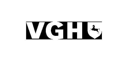 Sponsor VGH